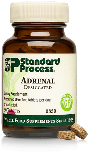 Chiropractic Brooklyn NY Adrenal Desiccated
