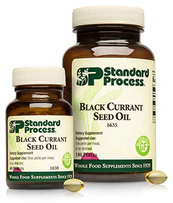 Chiropractic Brooklyn NY Black Currant Seed Oil Family